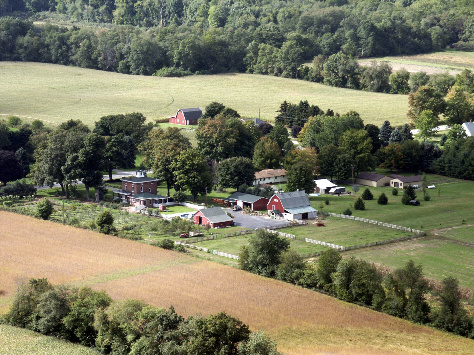 Home | Bertrand Farm | Growing Sustainable Solutions